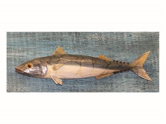 Ahşap Uskumru Balığı Görseli