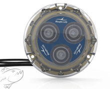 Sualtı Aydınlatma Lambası - Piranha P3 SM Blue Görseli