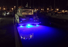 Sualtı Aydınlatma Lambası - Barracuda B12 SM Blue Görseli