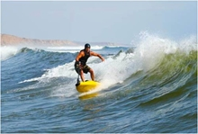 Picture of Power Surfboard - 330 cc