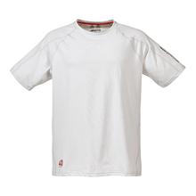 Picture of T-Shirt - Erkek - Evolution Logo - Platinum
