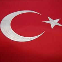 Türk Bayrağı - Nakışlı - 50x75