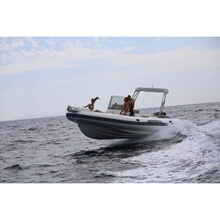 Picture of RIB - Top LINE- 775 Sun - Standard - Grey Uphostery